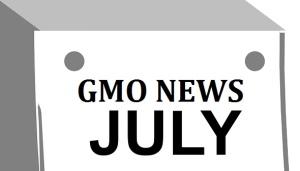 GMONEWS(7月)