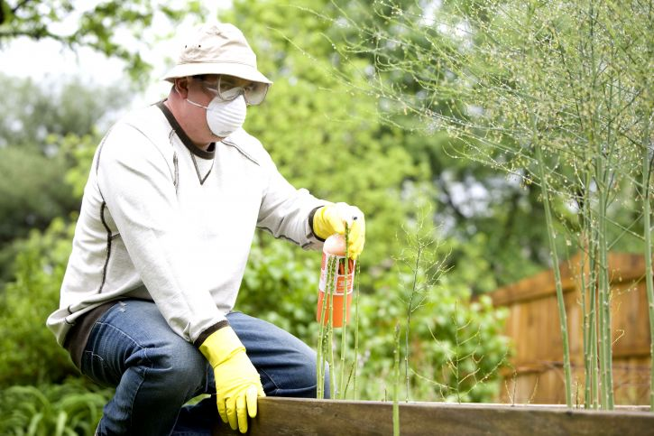man-fertilizing-plants-in-his-garden-725x483